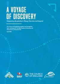A Voyage of Discovery research report cover